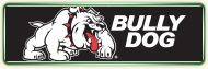 Bully Dog  Exhaust at Stu's Long Beach